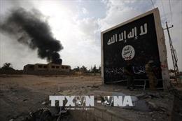 Hội đồng bảo an Liên hợp quốc nghe báo cáo về cuộc điều tra tội ác của IS