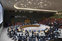 Mỹ phủ quyết nghị quyết HĐBA kêu gọi bảo vệ người Palestine