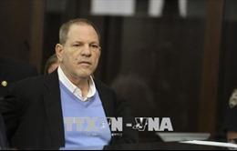 Thêm cáo buộc quấy rối tình dục đối với nhà làm phim Harvey Weinstein