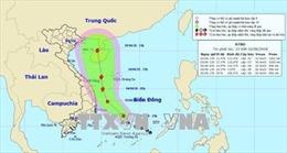 Áp thấp nhiệt đới giật cấp 9, khả năng mạnh lên thành bão