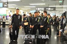 World Cup 2018: Bí quyết hồi phục năng lượng nhanh chóng của tuyển Hàn Quốc