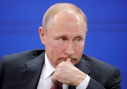 Ông Putin chia sẻ 'ngã rẽ nghề nghiệp' nếu không trở thành Tổng thống Nga