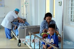 Sơn La: Chín người bị cấp cứu vì ăn nhầm nấm độc