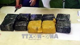 Thanh Hóa bắt đối tượng vận chuyển ma túy đá và hồng phiến