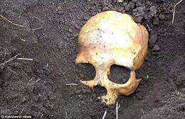 Cụ ông chết đứng khi đào thấy hộp sọ chồng cũ của vợ trong vườn