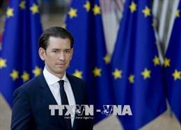 Áo sẽ trục xuất hàng loạt giáo sĩ Hồi giáo và đóng cửa 7 đền thờ
