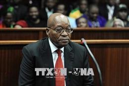 Nam Phi kiên quyết điều tra nghi án cựu Tổng thống Jacob Zuma tham nhũng