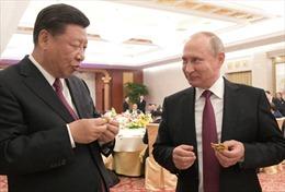 Tổng thống Nga Putin trổ tài làm bánh bao