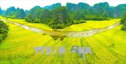 Hút khách du lịch bằng giá trị văn hóa và sản phẩm truyền thống