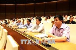 Kỳ họp thứ 5, Quốc hội khóa XIV: Bảo đảm an ninh thông tin trên không gian mạng