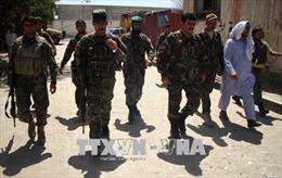 Taliban tiến hành nhiều vụ tấn công ngay trong ngày đầu lệnh ngừng bắn có hiệu lực