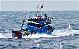 Đã tìm thấy thi thể thuyền viên trong vụ chìm tàu cá ở Cà Mau