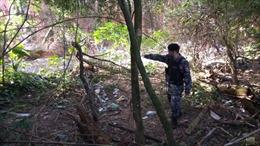 7 người chết trong vụ thanh toán của các băng đảng ma túy tại Brazil