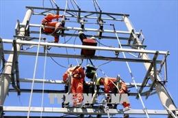 Điện lực Quảng Ninh khắc phục sự cố cáp điện tại đảo Cô Tô, Vân Đồn
