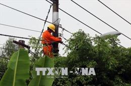 Gấp rút khắc phục sự cố lưới điện do mưa kèm lốc xoáy tại Hà Giang, Lai Châu
