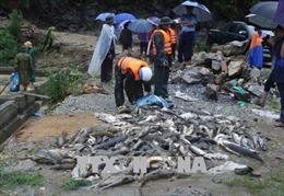 Trung ương Hội Chữ thập đỏ Việt Nam hỗ trợ người dân bị ảnh hưởng mưa lũ