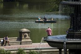 Công viên Trung tâm New York chính thức nói 'Không' với ô tô