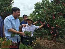 Vì sao xuất khẩu nông sản đạt mức kỷ lục?