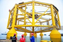 Trại cá thông minh - mô hình chống thiên tai và tiết kiệm nhân lực tại Trung Quốc