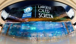 Nhu cầu màn hình OLED toàn cầu tiếp tục tăng