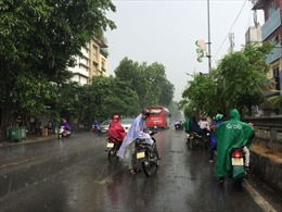 Hà Nội đón cơn mưa vàng 'giải nhiệt'