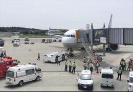 Nhật Bản hủy 176 chuyến bay nội địa để kiểm tra động cơ