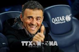World Cup 2018: Tây Ban Nha bổ nhiệm tân HLV Luis Enrique