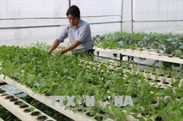 Năm Canh Tý 2020, Tiền Giang kỳ vọng có thêm nhiều đột phá