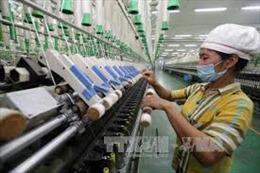 Cần xem lại chính sách ưu đãi để Việt Nam không là 'thiên đường trốn thuế'