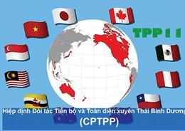 Việt Nam cùng các nước thúc đẩy CPTPP sớm có hiệu lực