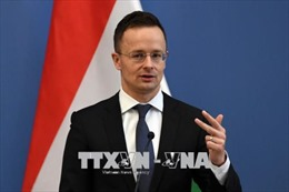 Hungary-Pháp chú trọng hợp tác an ninh năng lượng và chống khủng bố