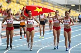 Năm 2019, thể thao Việt Nam tiếp tục tập trung vào các môn trọng điểm
