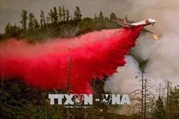 California sơ tán hàng chục nghìn người do cháy rừng lan rộng