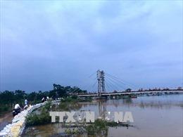 Hà Nội dồn lực ứng phó nguy cơ vỡ đê sông Bùi, Chương Mỹ