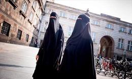 Đan Mạch chính thức cấm khăn trùm đầu Hồi giáo