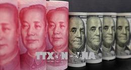 Chuyên gia: Chiến lược thuế của Mỹ dựa trên hiểu biết sai về thương mại