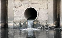 Phạt 435 triệu đồng doanh nghiệp nuôi tôm xả thải ra môi trường