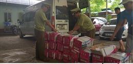 Bắt giữ xe khách chở 24 thùng hạt dưa tách vỏ nhập lậu dùng làm nhân bánh Trung thu