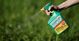 Lật lại lịch sử bê bối của Monsanto - công ty sản xuất chất độc da cam vừa thua kiện