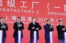 Vì sao Elon Musk quyết gây dựng tương lai Tesla từ một bãi bùn lầy ở Trung Quốc