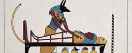 Anubis - Vị thần chết Ai Cập được tôn vinh bởi 8 triệu con chó ướp xác