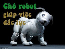 Robot chó cưng của Sony giúp việc đắc lực gia đình