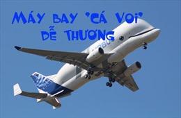 Đột nhập xưởng lắp ráp máy bay Airbus 'Cá voi' Beluga