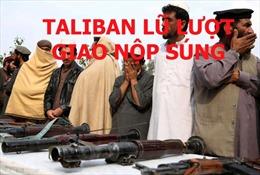 Phiến quân Taliban giao nộp vũ khí sau thỏa thuận hòa bình với Mỹ