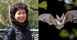 Cuộc săn lùng virus SARS và SARS-CoV-2 của 'nữ người dơi' Trung Quốc - Kỳ 1