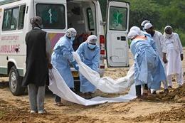 COVID-19 tới 6h sáng 8/7: Thế giới gần 12 triệu ca bệnh, Mỹ chính thức rút khỏi WHO
