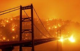 Cháy rừng ở California, Mỹ thiêu đốt kỷ lục 4 triệu mẫu đất đai