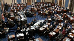 Thượng viện Mỹ muốn tăng tốc phiên xử luận tội cựu Tổng thống Trump