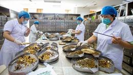 Trung Quốc cấp phép ba loại thuốc Đông y điều trị COVID-19