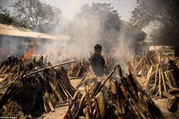 COVID-19 'nuốt người như quái vật' ở Ấn Độ, lò hoả táng và bãi thiêu đều quá tải